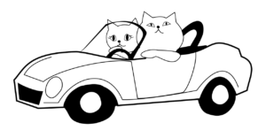 c1f94843.png