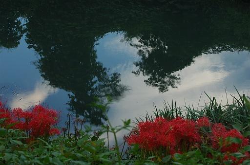 赤の傍らの水風景