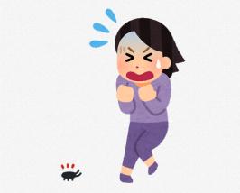 【動画】ゴキブリ、ガチでしぶとい *閲覧超注意