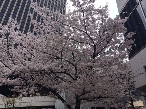 2014-04-03-12-33-53