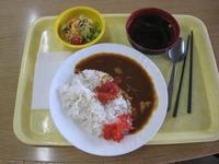 5月9日チキンとトマトの朝カレー