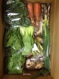 野菜セットVOL26