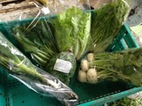 野菜セット5月
