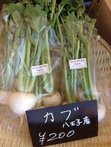YUGIMURA FARM