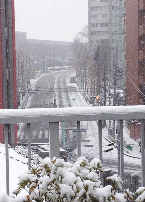 渋谷雪景色