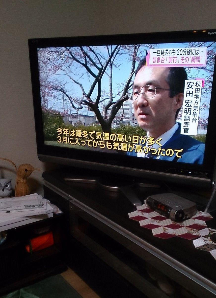 20160422_01.jpg
