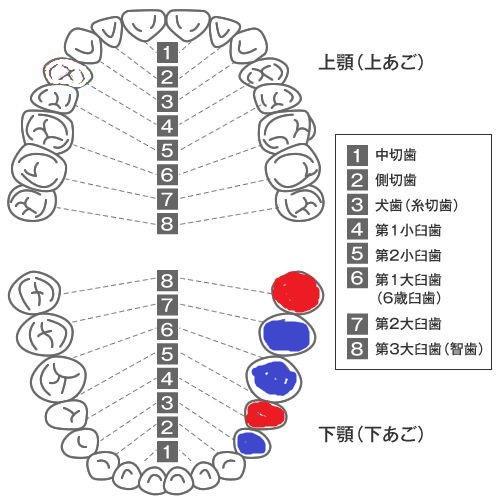20151222_04.jpg