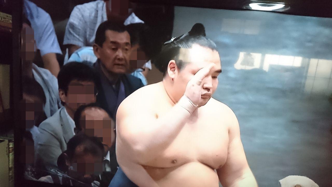 テレビ16鶴竜
