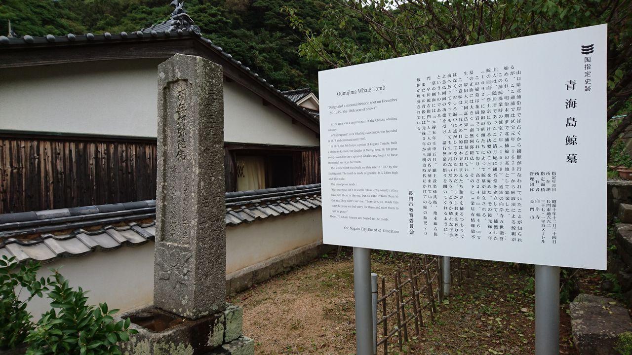 22.くじら墓