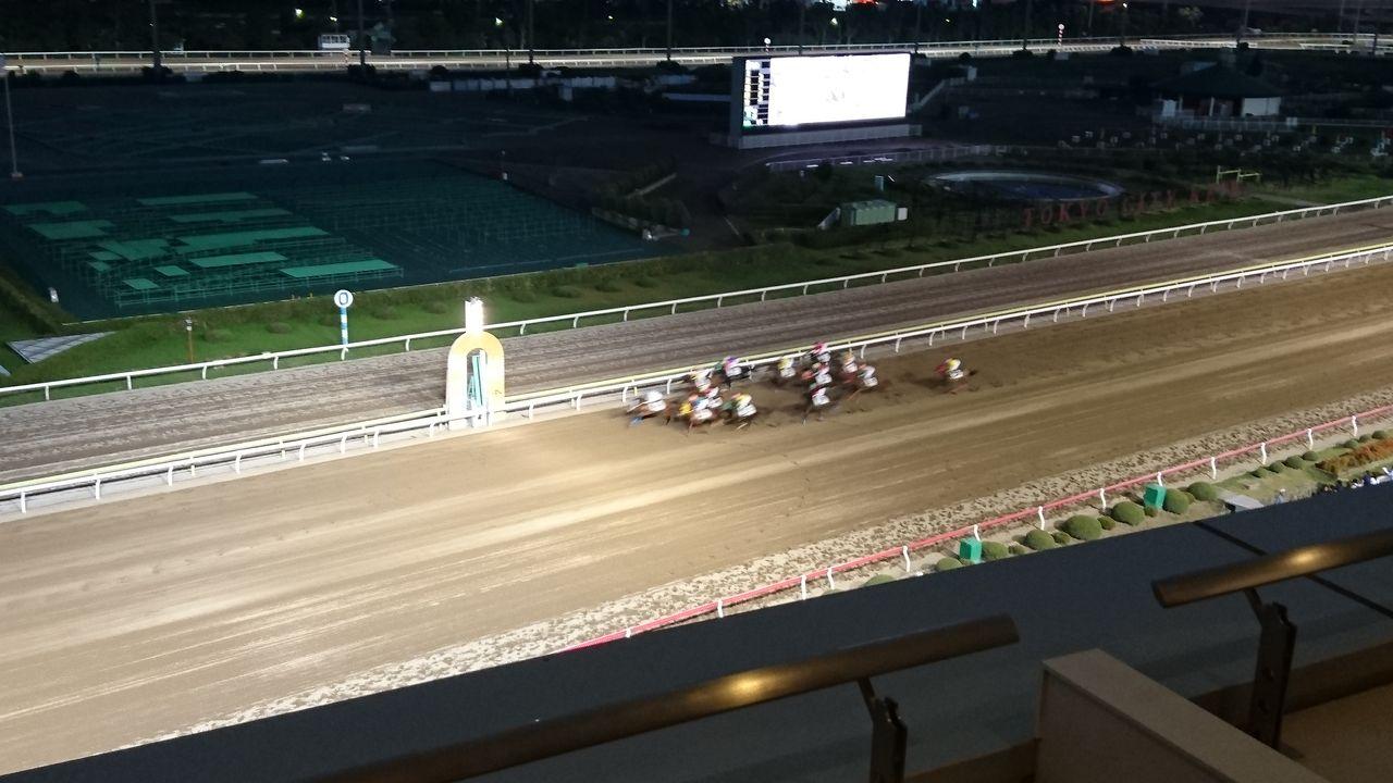 7.トゥインクル競馬