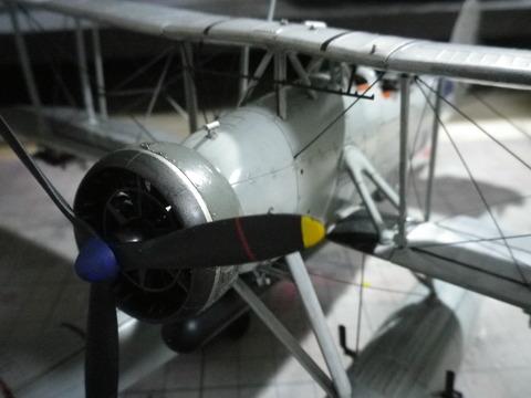 IMGP1258