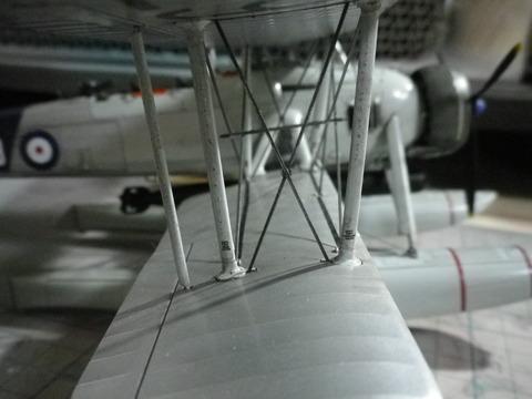IMGP1265