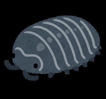 bug_dangomushi