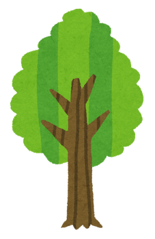 tree_seichou07