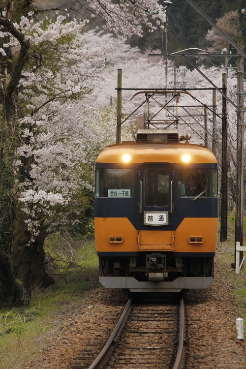 ooigawa7