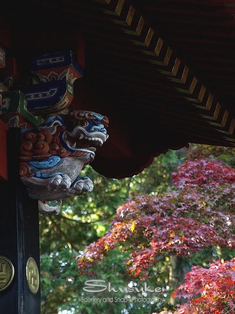 北口本宮富士浅間神社4