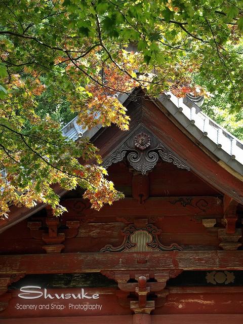 北口本宮富士浅間神社5