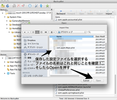 Open_と_iBackupBot
