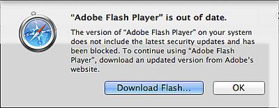 Safari_Flash_warning_201303
