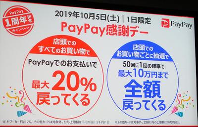 dsvdskf_paypay_00