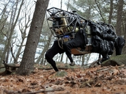 boston-dynamics-robot-dog_640x480