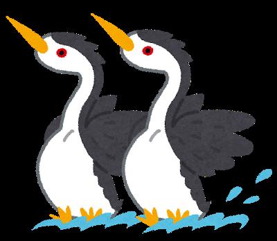 bird_kubinaga_kaitsuburi
