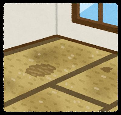 room_yuka_tatami_old