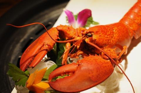 lobster-2495967_1920