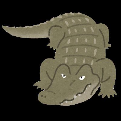 animal_crocodile_wani