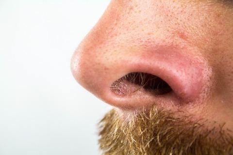 nose-2790325_1920