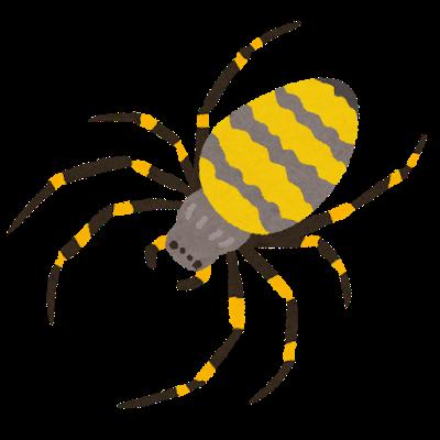bug_kumo_jorougumo