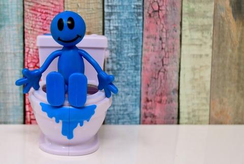 toilet-3311305_1920
