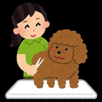 pet_triming_grooming