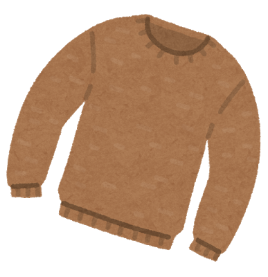 fashion_sweater_u