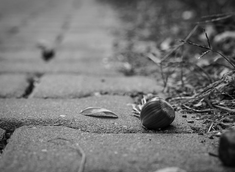 pavement-1707474_1920