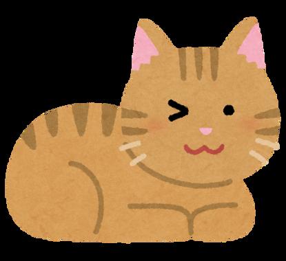 cat_wink_brown