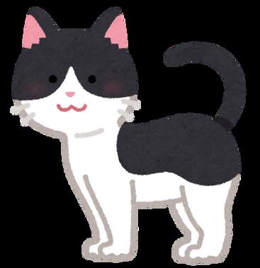 cat04_moyou_black_moyou_white