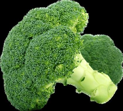 broccoli-1450274_1920