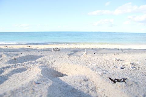 beach-2610305_1920