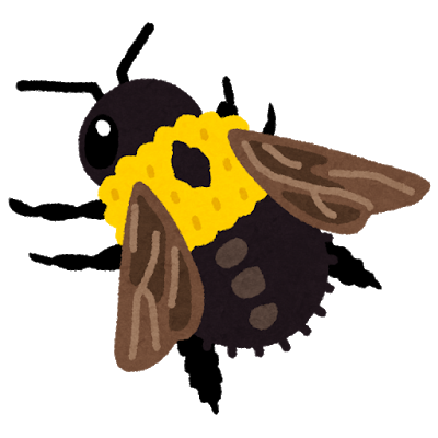 bug_kumabachi