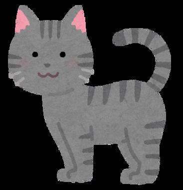 cat08_moyou_sabatora