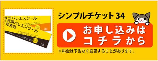 テンプレート-シンプルチケット34_申し込みD