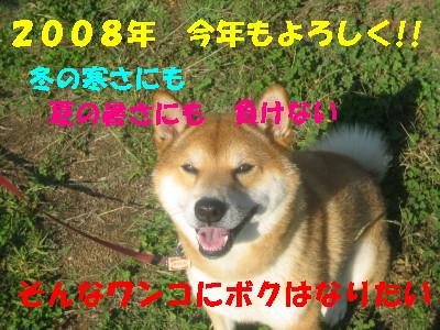 6a01c8aa.jpg