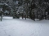 雪の小仏峠