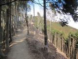 671m峰−景信山
