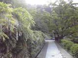 シーデスタより白糸の滝3