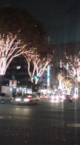 ギャル革命  渋谷イルミ