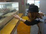 ギャル革命  サンゴ見学
