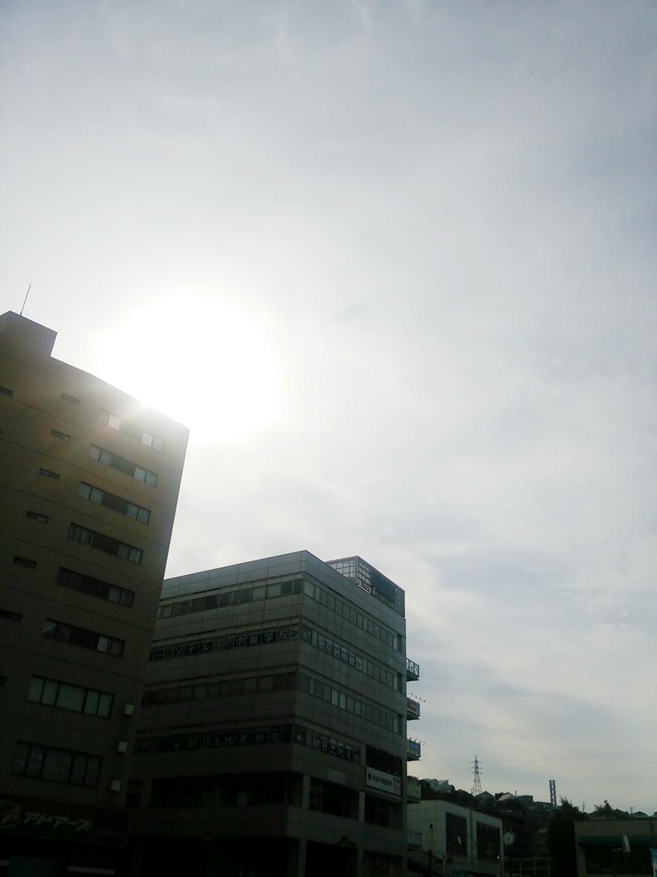 DSC_0610-2