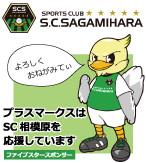 scsagamihara146